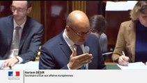 """QAG - Position de la France sur le """"Brexit"""" au prochain Conseil européen - Réponse d'H. Désir à D. Raoul - Sénat"""
