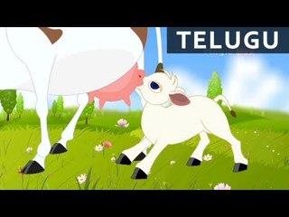 Thotalona Tela Aavu - Bala Anandam - Telugu Nursery Rhymes/Songs For Kids