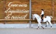 Événement : concours d'équitation de travail