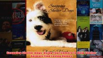Download PDF  Snapping Shelter Dogs Using Your Camera to Help Shelter Animals Find Loving Homes FULL FREE
