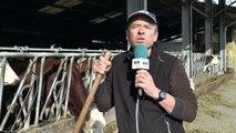 DICI TV - La ferme du Buissonet à Selonnet a robotisé la traite de ses vaches