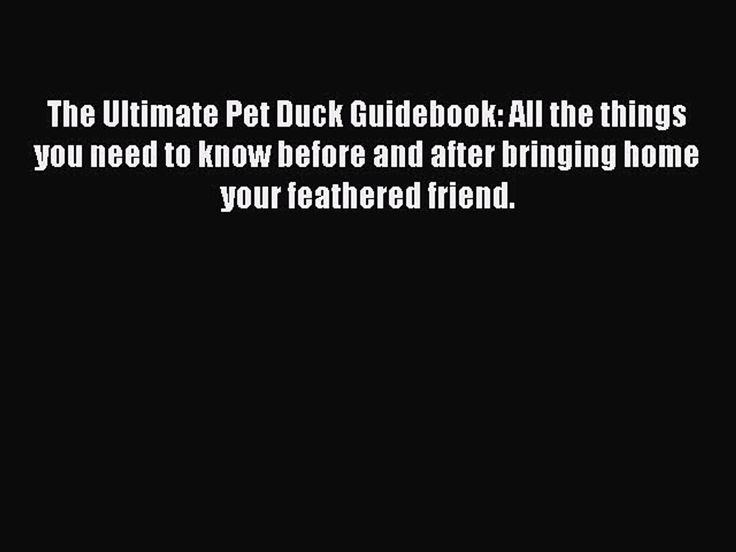 The Ultimate Pet Duck Guidebook All the things you need to know before bringing home your feathered friend.