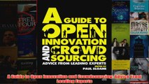 Download PDF  A Guide to Open Innovation and Crowdsourcing Advice From Leading Experts FULL FREE