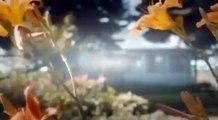 1er amour. Film romantique americain complet en francais. Film damour complet en francais 2015