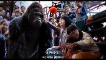 Mr. Go 3D Official Trailer #1 (2013) - Korean Baseball Gorilla Movie HD (1080p)