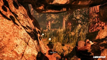 FarCry Primal Walkthrough Part 8 ''Blood Of Oros'' Story Playthrough/Gameplay (PS4)