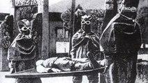 2e Guerre Mondiale - L'armée biologique du 3e Reich