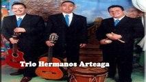 Trío Hermanos Arteaga - Azabache