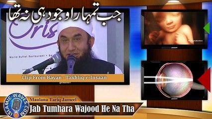 Exclusive Clip Of Maulana Tariq Jameel With Human Creation Illustration
