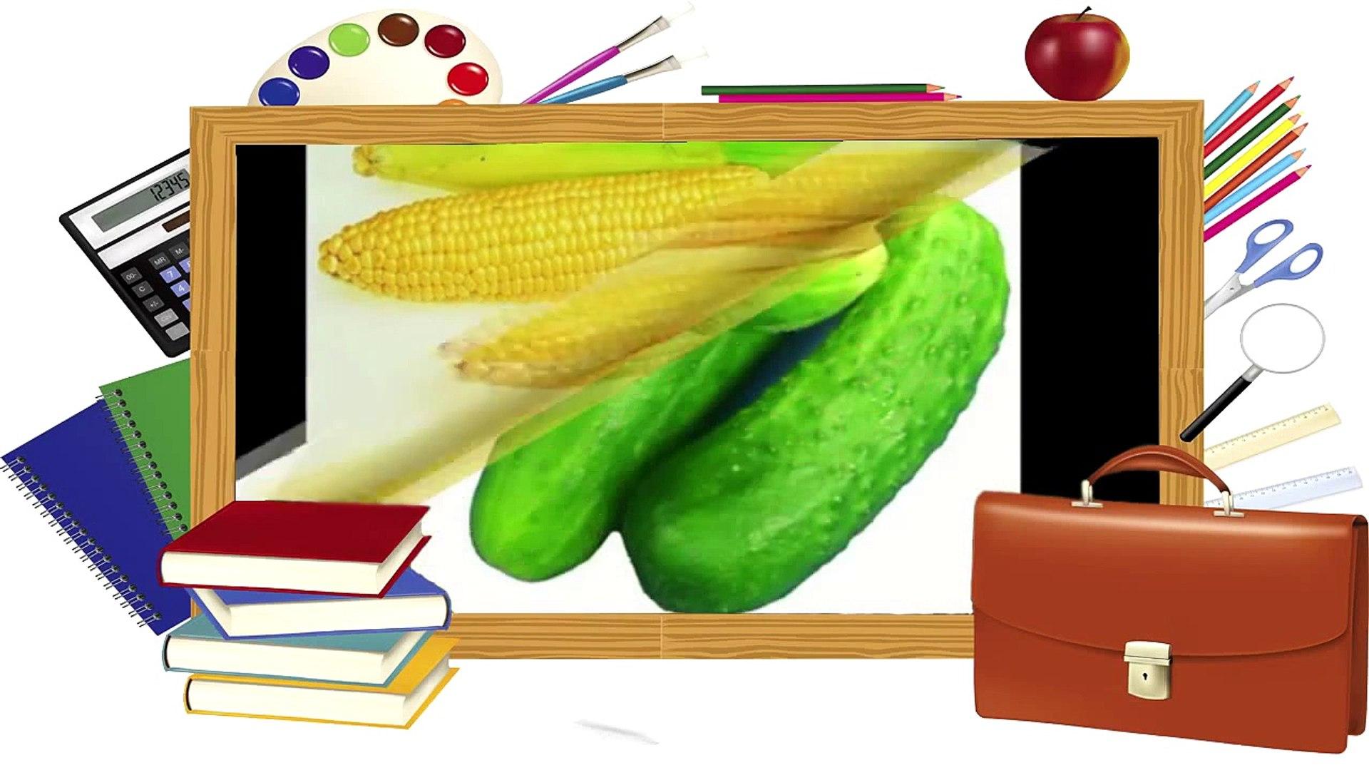 Развивающиймультфильм Овощи для детей