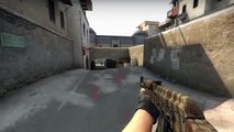 CS:GO Fun with Friends! (Counter Strike Global Offensive)