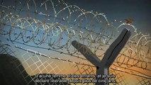 Guantáno Bay: Les grèves de la faim - animation [sous-titres français]