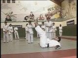 Judo - Progression de la ceinture blanche à la ceinture orange