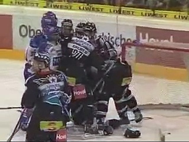 VSVBWL Goalies fight