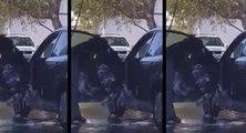 Cette femme a une étonnante façon de laver sa voiture
