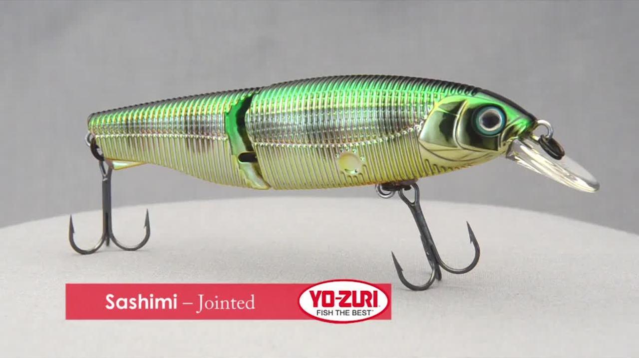 Sashimi – Jointed