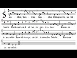 Sanctus missa II, Fons bonitatis