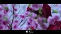 SANAM RE REMIX Video Song   DJ Chetas   Pulkit Samrat, Yami Gautam   Divya Khosla Kumar