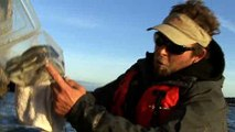 Kayak Fishing '09: Catching Striped Bass with Live Eels