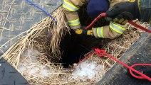 Encore une belle victoire pour ces sauveurs de vies que sont les pompiers ! Bravo !
