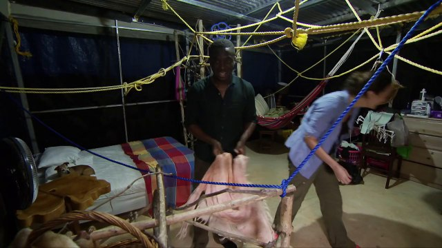 Baby sloths peeing in the nursery - Natures Miracle Orphans: Series 2 Episode 2 Preview - BBC One