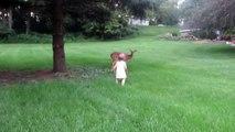 Sevimli bebek Bambi ile karşılaşırsa...