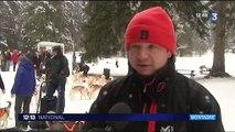 En Savoie, tout le monde peut conduire des chiens de traineaux