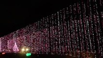 Yogi Bear Jellystone Christmas lights