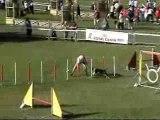 Veni & Jean-yves Jumping finale ch de fr 07