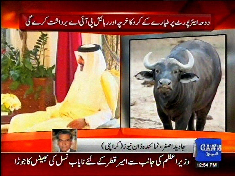 PM Nawaz's Interesting gift for Ameer-e-Qatar
