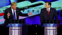 Senator Ted Cruz Suggests Donald Trump Has Mafia Ties