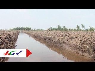 Kinh nghiệm làm đất ở những vùng nhiễm mặn   HGTV
