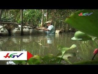 Hiệu quả về mô hình nuôi lươn trong can   HGTV