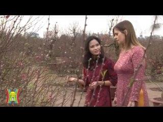 Thúc đẩy quan hệ hợp tác Việt Nam – Israel   HanoiTV