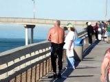 Surfer Jumps Off Ocean Beach Pier and Lands on Surfboard #1 Ocean Beach Surfing