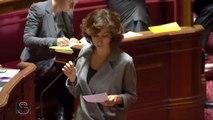 Vote solennel de la loi « Liberté de création, architecture et patrimoine » au Sénat