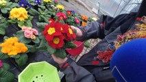 Les Experts Jardin souhaitent une bonne fête à toutes les grands-mères !