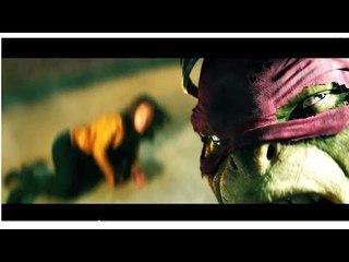 Teenage Mutant Ninja Turtles (EXPLAINED)