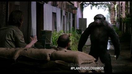El Planeta De Los Simios: Confrontación - Clip Koba (HD)