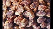 Dried Apricots And Organic Dried Apricots - Healthy Eating; Turkish Dried Apricots