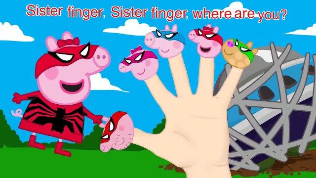 Peppa Pig Spider Man 4 Finger Family \ Nursery Rhymes Lyrics