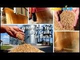 Buy Bulk Grains Wholesale, Bulk Malted Grain, Buying Whole Grains, Bulk Rye Grain, Bulk Wheat Grain