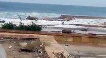 ارتفاع الأمواج في المكلا بعد اقتراب اعصار شابالا من اليابسة اليوم الاثنين 2 11 2015