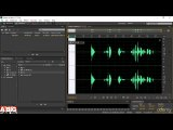 701 Spectral Frequency Display - Video And Audio Editing Course