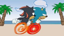 Sonic vs Shadow Fight to the Death - Sonic & Shadow #7