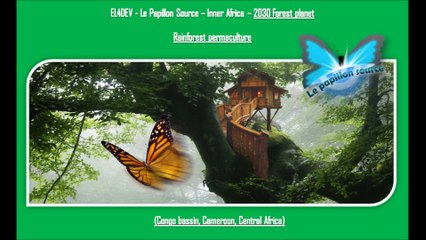 Social and united world - EL4DEV - Le Papillon Source Inner Africa - Rainforest permaculture