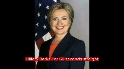Hillary Clinton Sings a Rock Song  ....   Gone to The Dogs