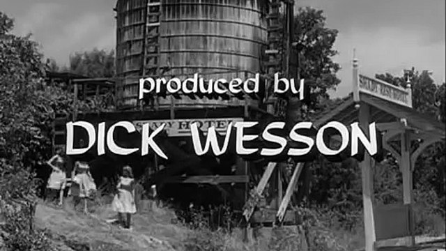 Petticoat Junction S01E04