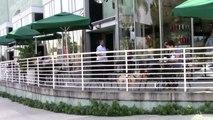 PREMIUM EXCLUSIVE - Paris Jackson Rocks Platinum Blonde Punk Do At Starbucks