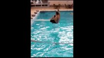 Best Jumping Funny Video Swimming Pool